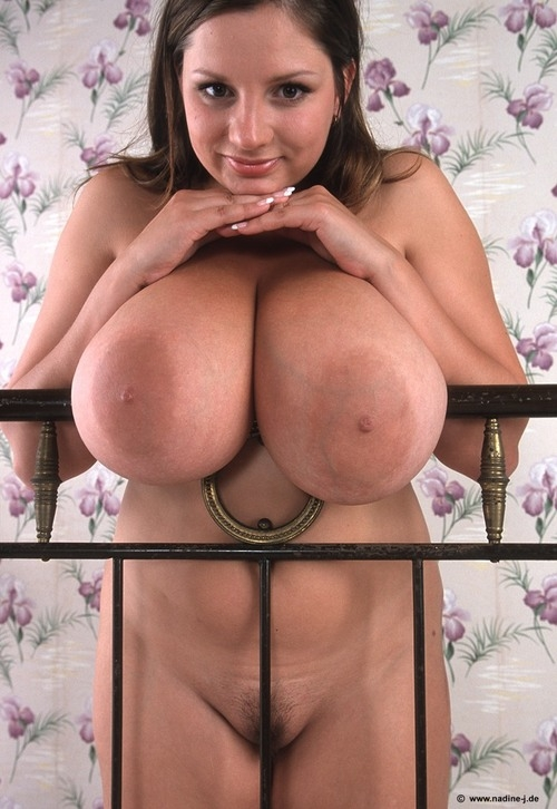 Normal size boobs pics